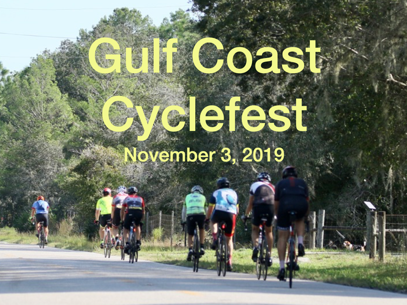 Cyclefest 2019 video