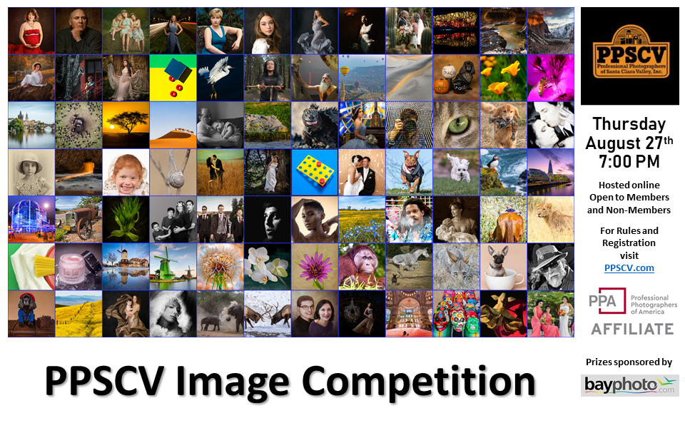 PPSCV Image Competition - August 2020