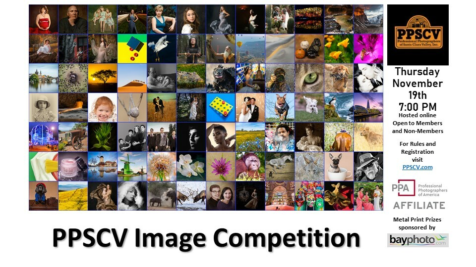 PPSCV Image Competition - November 2020