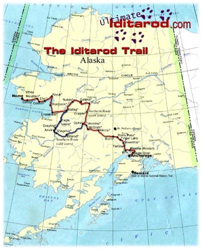 Iditarod Trail Invitational was adorable invitation example