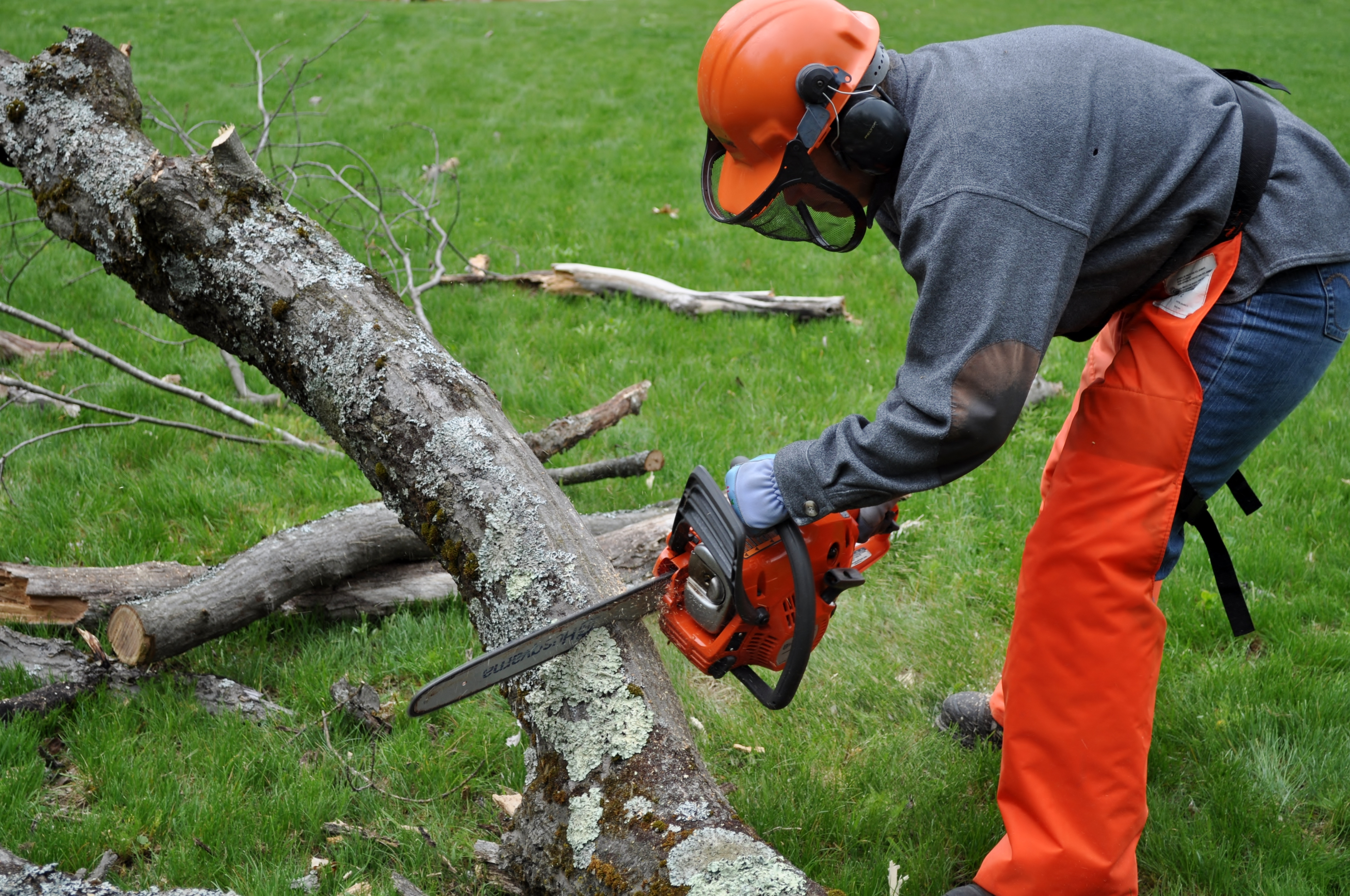Chain Saw Safety and Cutting Techniques Course - Events