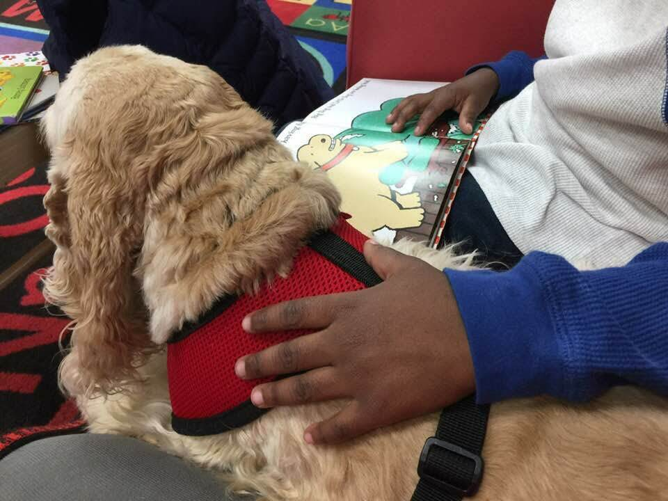 Reading to a dog