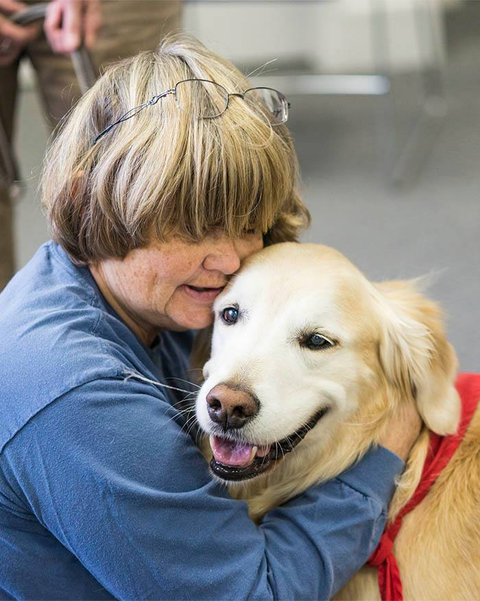 Animal Assisted Therapy Interaction