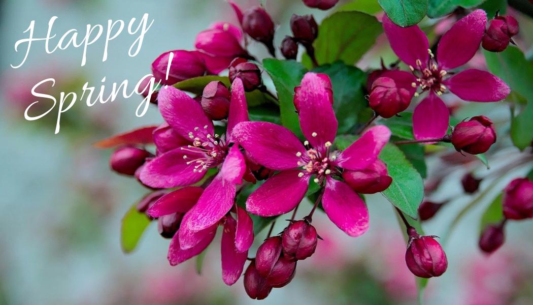 Happy Spring 2