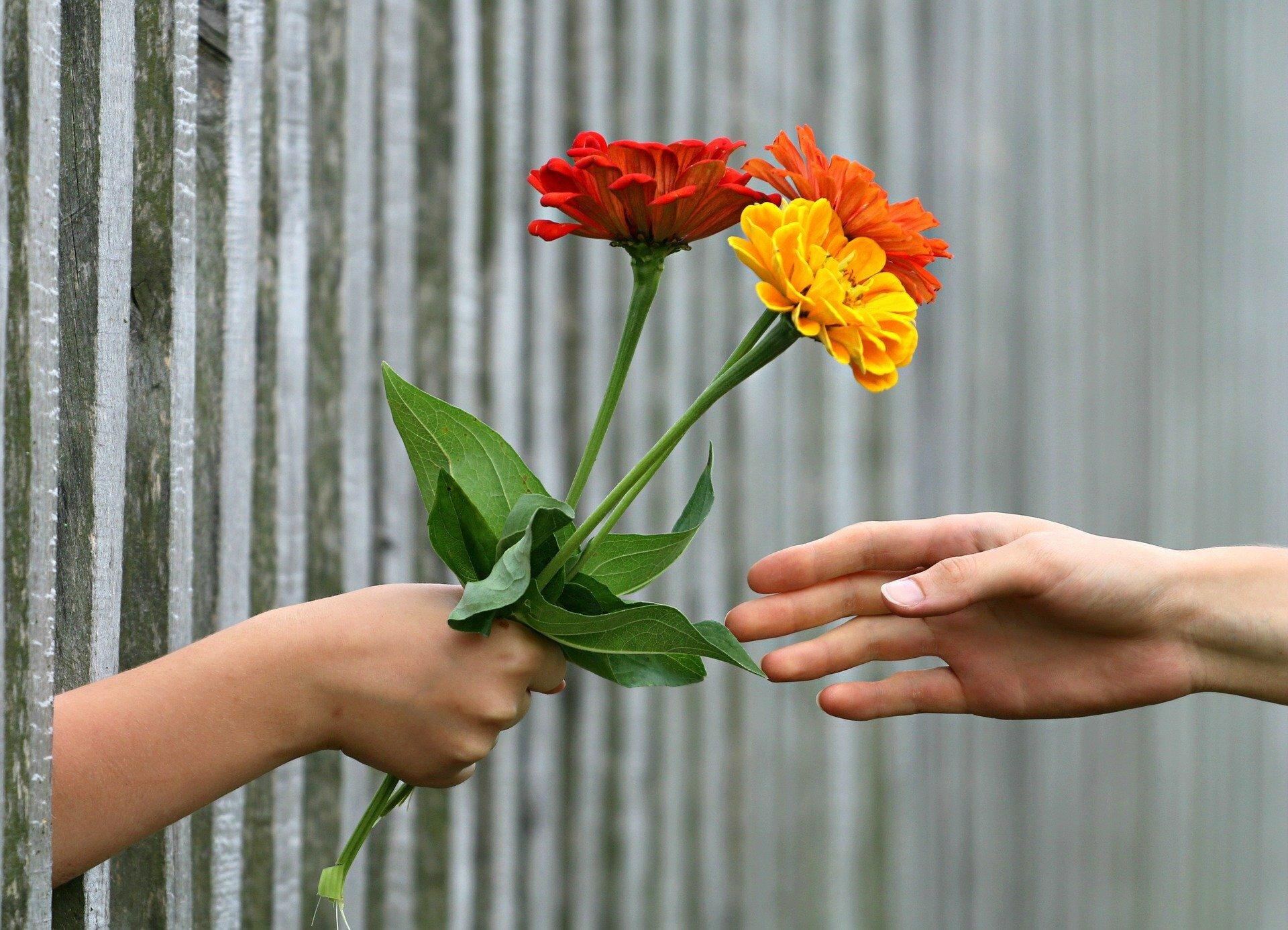 Flowers hands