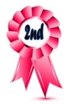 2nd Ribbon