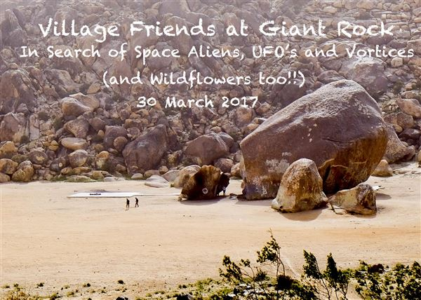 Villagers travelled to the desert to see wildflowers in bloom, as well as a giant rock, and then... there were the space aliens.