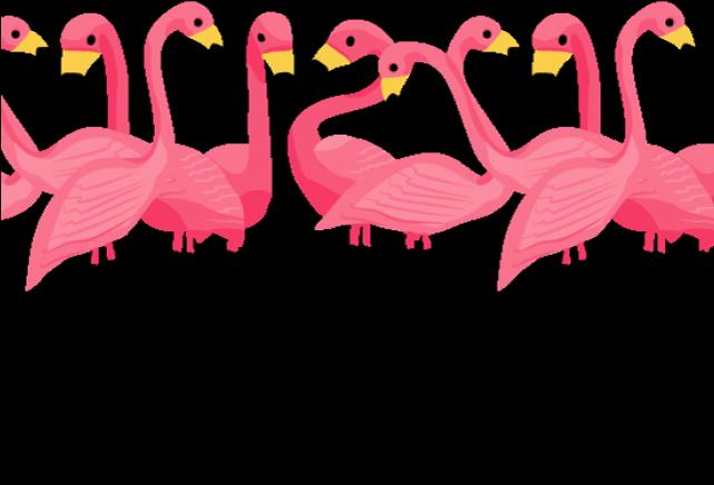 Flamingo Flocking