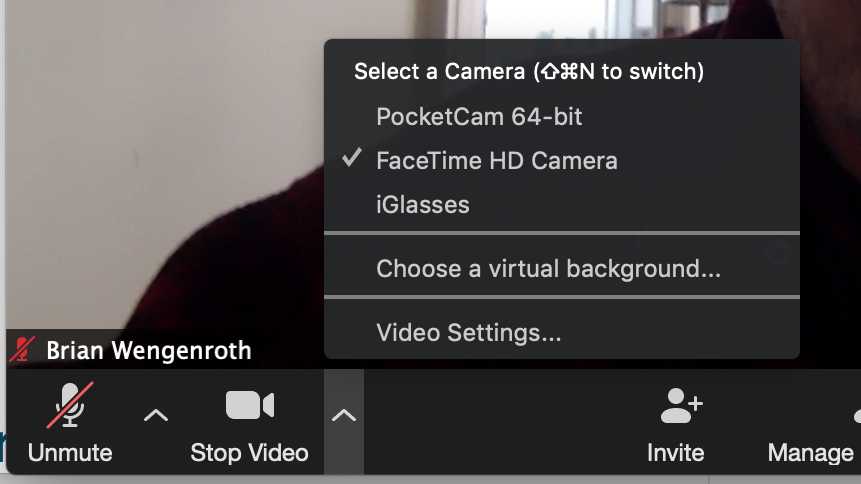 Zoom Video Controls