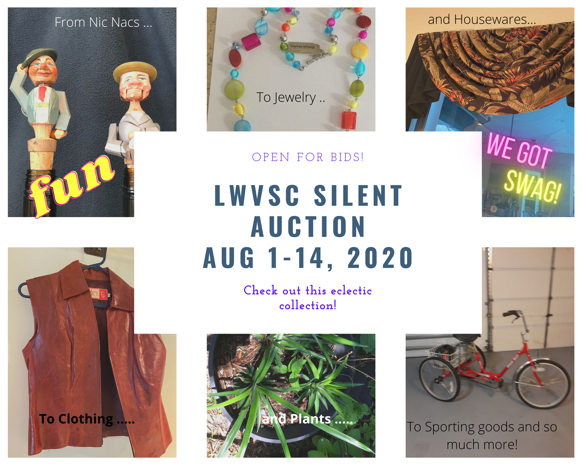 LWVSC 2020 Silent Auction Fundraiser is OPEN for Bids!