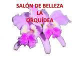 Salon de Belleza la Orquidea