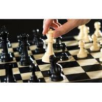 AJEDREZ - profesor de ajedrez a domicilio
