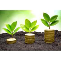 Oferta de préstamo entre rápido individual