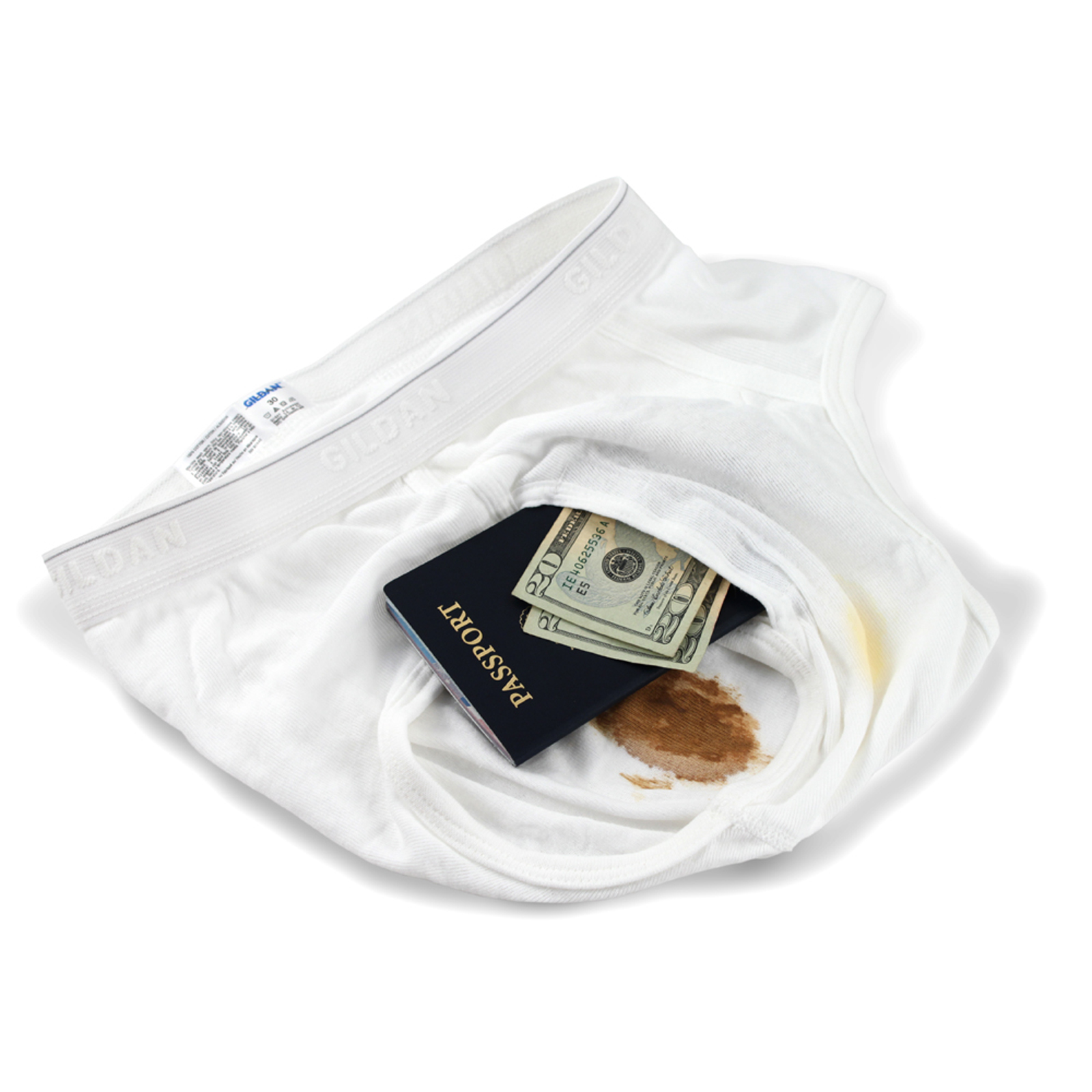 The Brief Safe Travel Security Hidden Contents Wallet Passport Protector