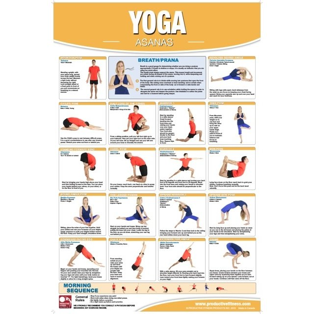Productive Fitness Poster Series Yoga Exercises