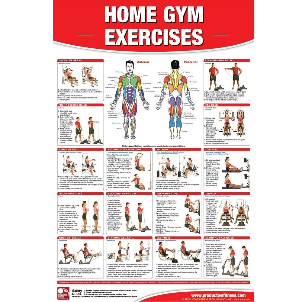 Productive Fitness Home Gym Basic Exercises Non Laminated Poster
