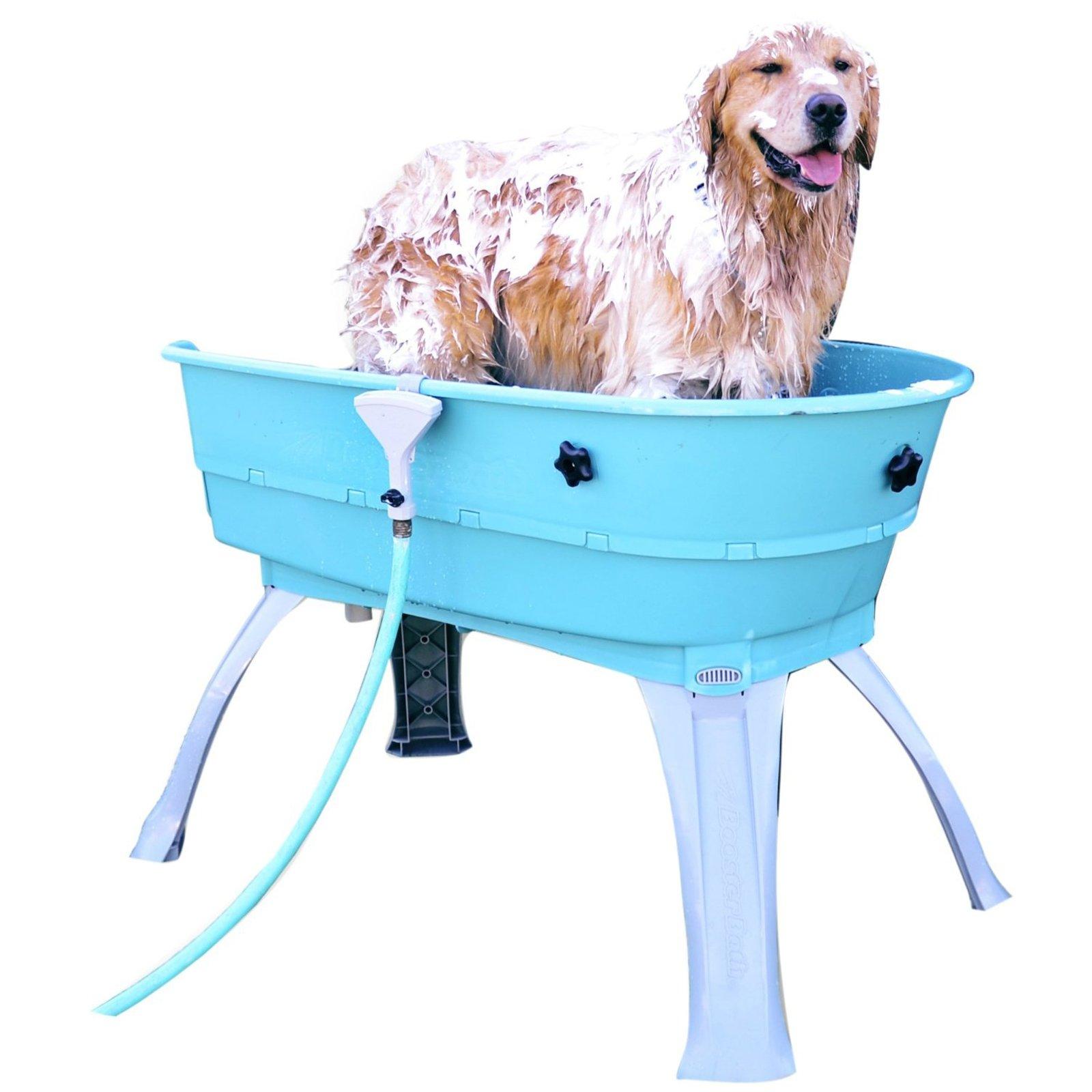 Booster bath outdoor dog washing station medium pet tub golden retriever happy in a booster bath solutioingenieria Images