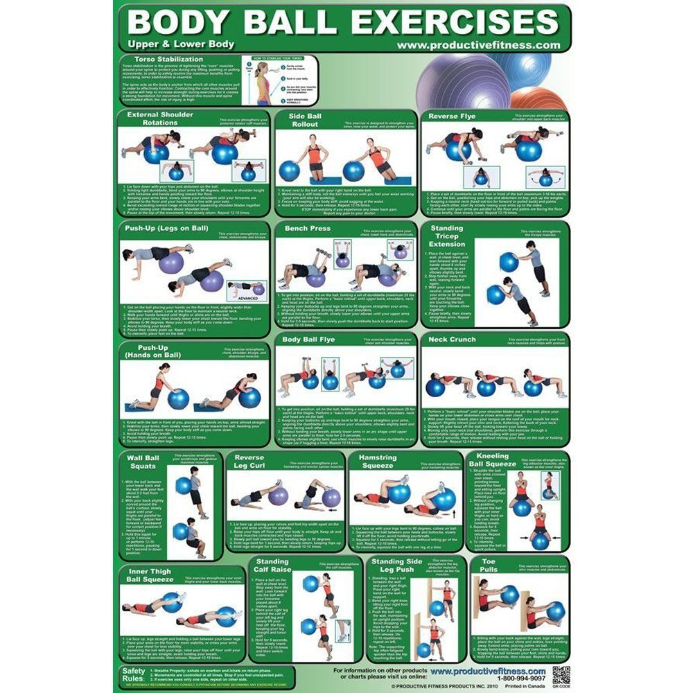 Productive Fitness and Health Instructional Poster - Upper and Lower Body Ball
