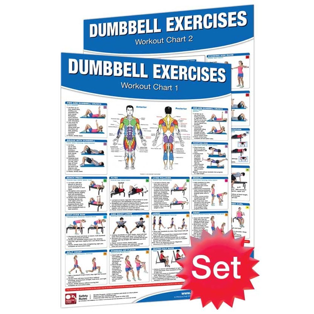 Productive Fitness Dumbbell Exercises Chart Poster 2pc Set Ebay