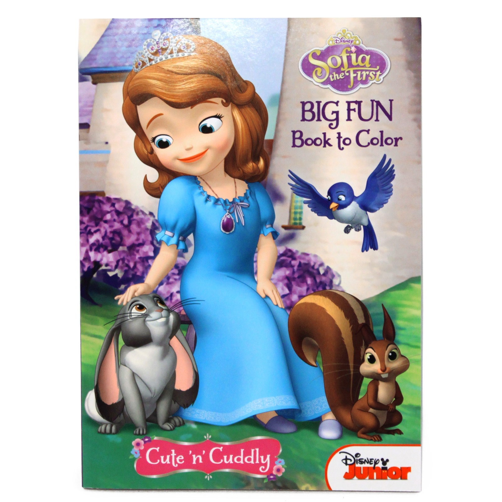 Sofia the First Big Fun Book to Color Activity Coloring Book