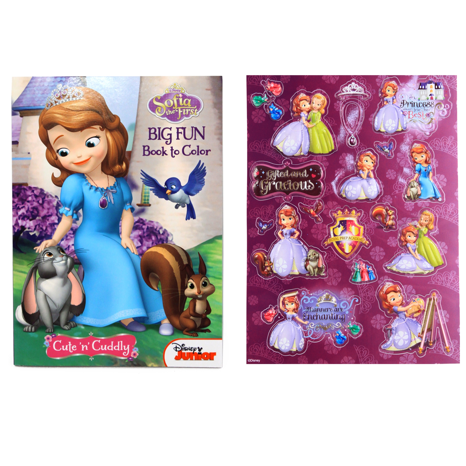 sofia the first big fun book to color activity coloring book stickers - First Coloring Book