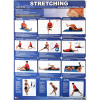 Productive Fitness Poster Series Lower Body Stretching Exercises Laminated