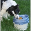 PortablePet Lunchbox - Dog Eating