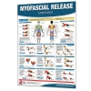 Productive Fitness Poster Series Myofascial Release Exercises