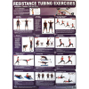 Productive Fitness Poster Series Upper Body Resistance Tubing Exercises Laminated
