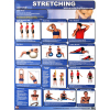 Productive Fitness Poster Series Upper Body Stretching Exercises Laminated