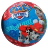 Paw Patrol Kids Small Basketball Rear