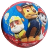 Paw Patrol Kids Small Basketball Front