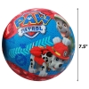 Paw Patrol Kids Small Basketball Scaled