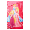Disney Princess Indoor Sleeping Bag