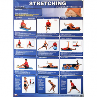 Productive Fitness Paper Poster Series Lower Body Stretching Exercises