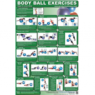 Upper and Lower Body Ball Exercise Poster by Productive Fitness