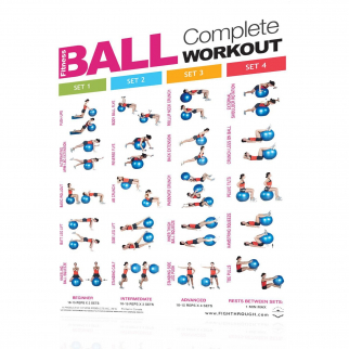 Productive Fitness Fighthrough Fitness Ball Exercises - Laminated