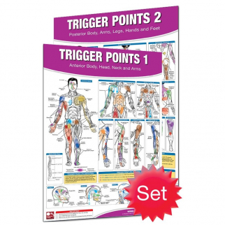 Productive Fitness and Health Poster - Trigger Points Massage Information Set