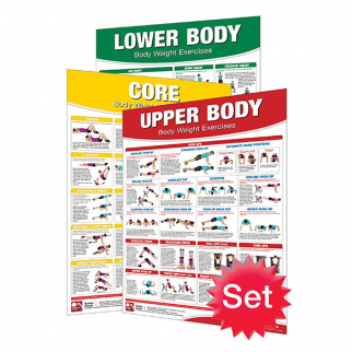 3pc Productive Fitness Complete Body Weight Exercises Chart Poster Set Laminated