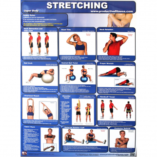 Productive Fitness Poster Series Upper Body Stretching Exercises Non-Laminated