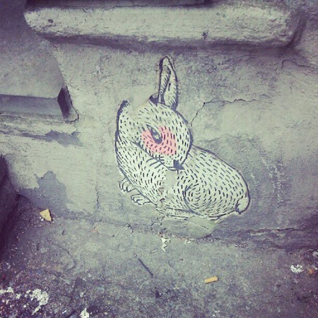Thumb nyc rabbit