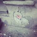 Thumb small nyc rabbit