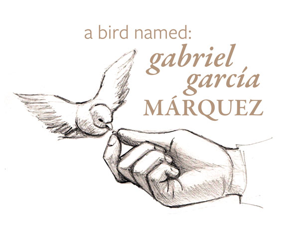 A Bird name Gabriel Garcia Marquez
