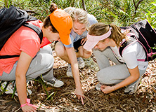 Lead an Earthwatch Student Group Expedition
