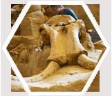 Mammoth Research in South Dakota