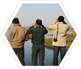 Field teams assess the habitat of tigers and elephants in the region.