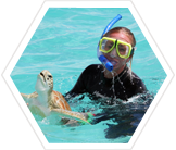 Turtle conservation in the Bahamas