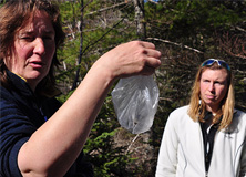Small mammal trapping with Dr. Buesching