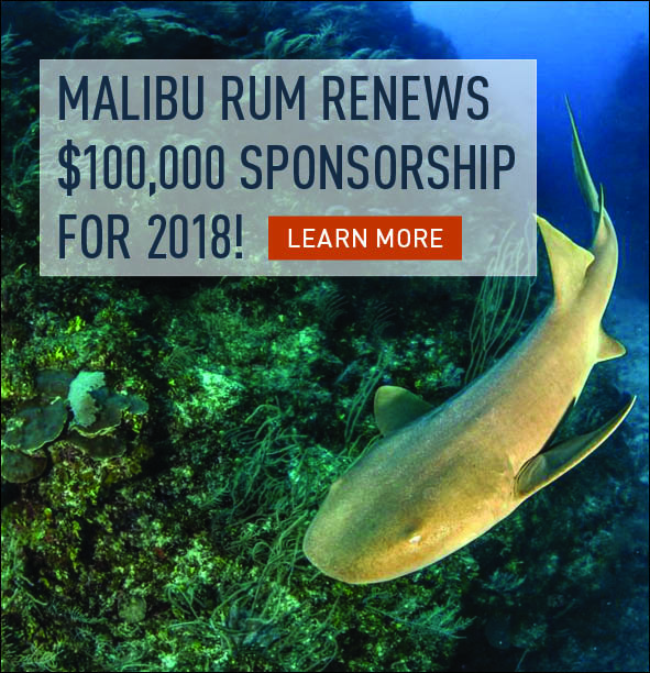 Malibu sea turtle support