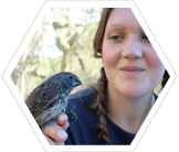 volunteer-research-finch-galapagos
